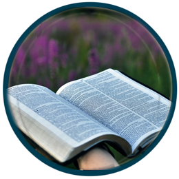 amar a bíblia curso tsade