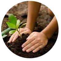 aula-codigo-florestal-lei 12651-concurso