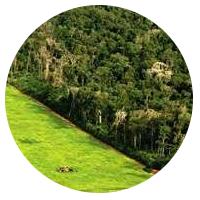 aula-codigo-florestal-lei-12651-concurso