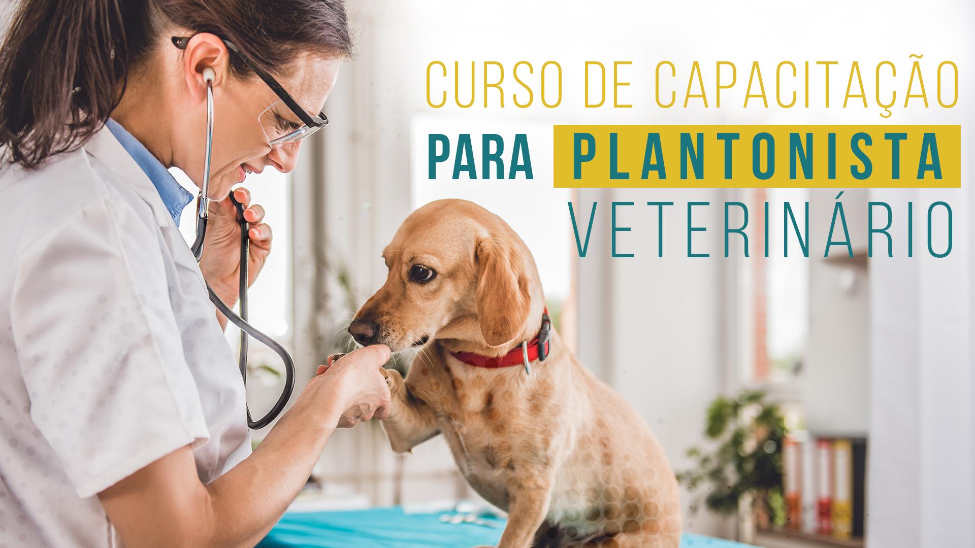 Curso de Capacitação para Plantonista Veterinário