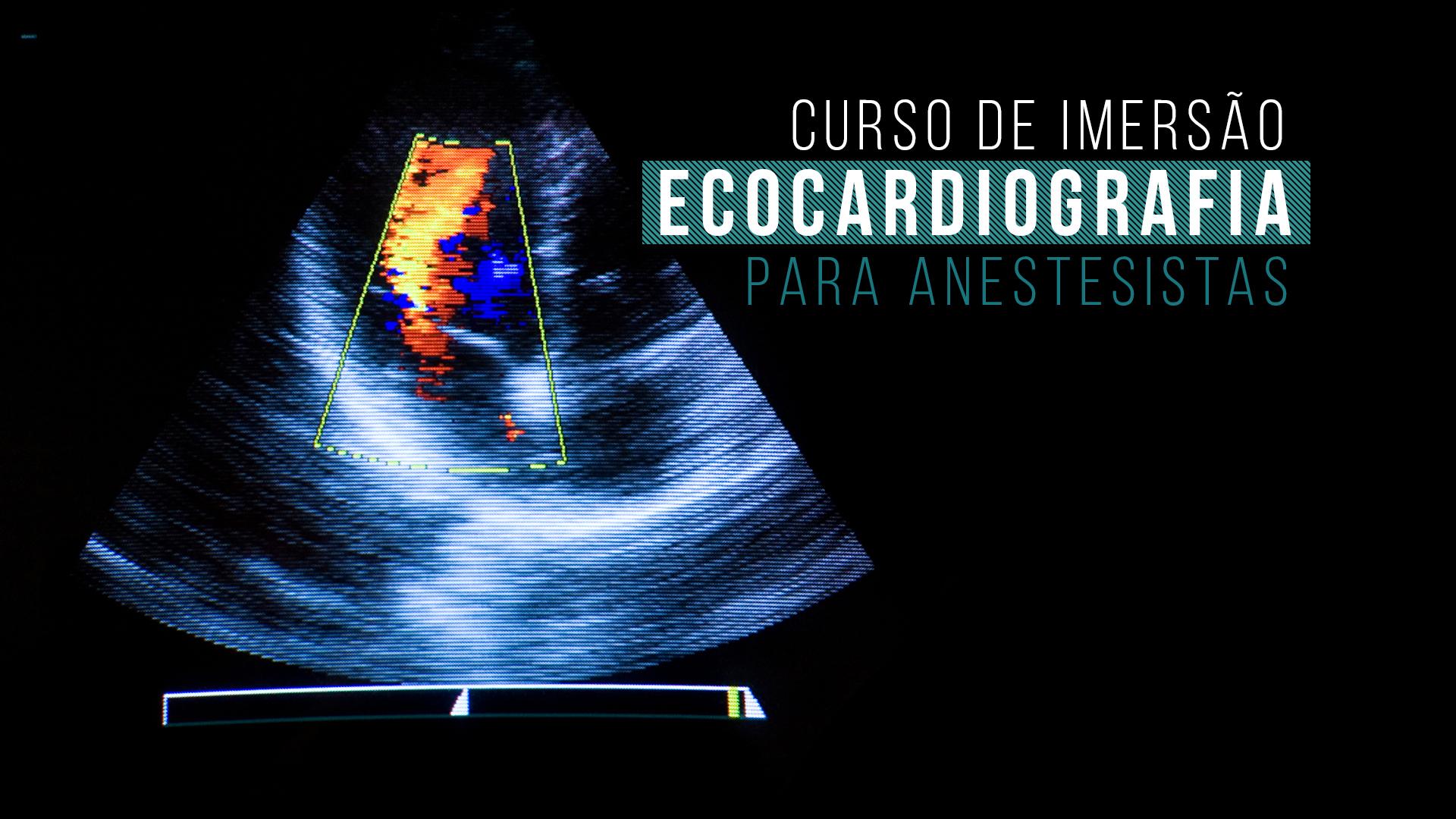 Curso de Imersão em Ecocardiografia para Anestesistas Veterinários