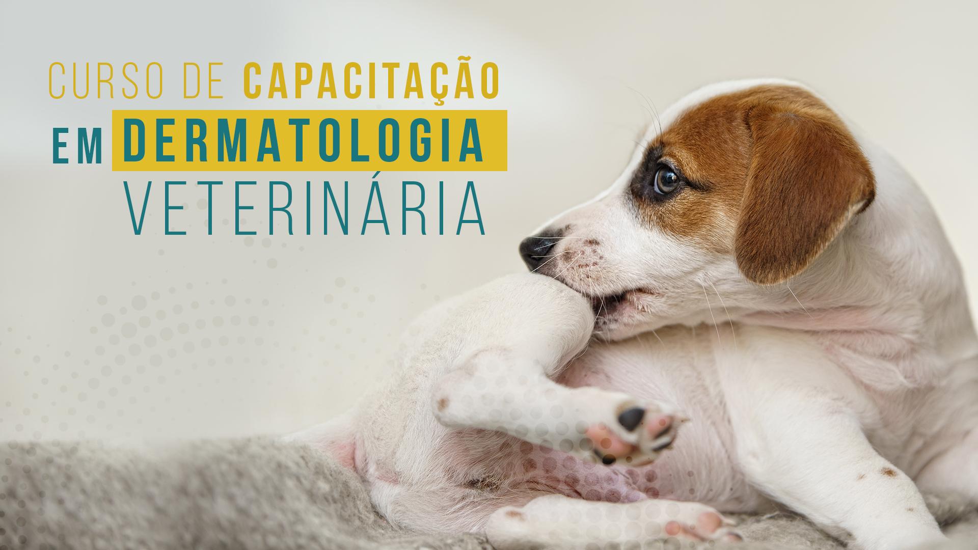Curso de Capacitação em Dermatologia Veterinária