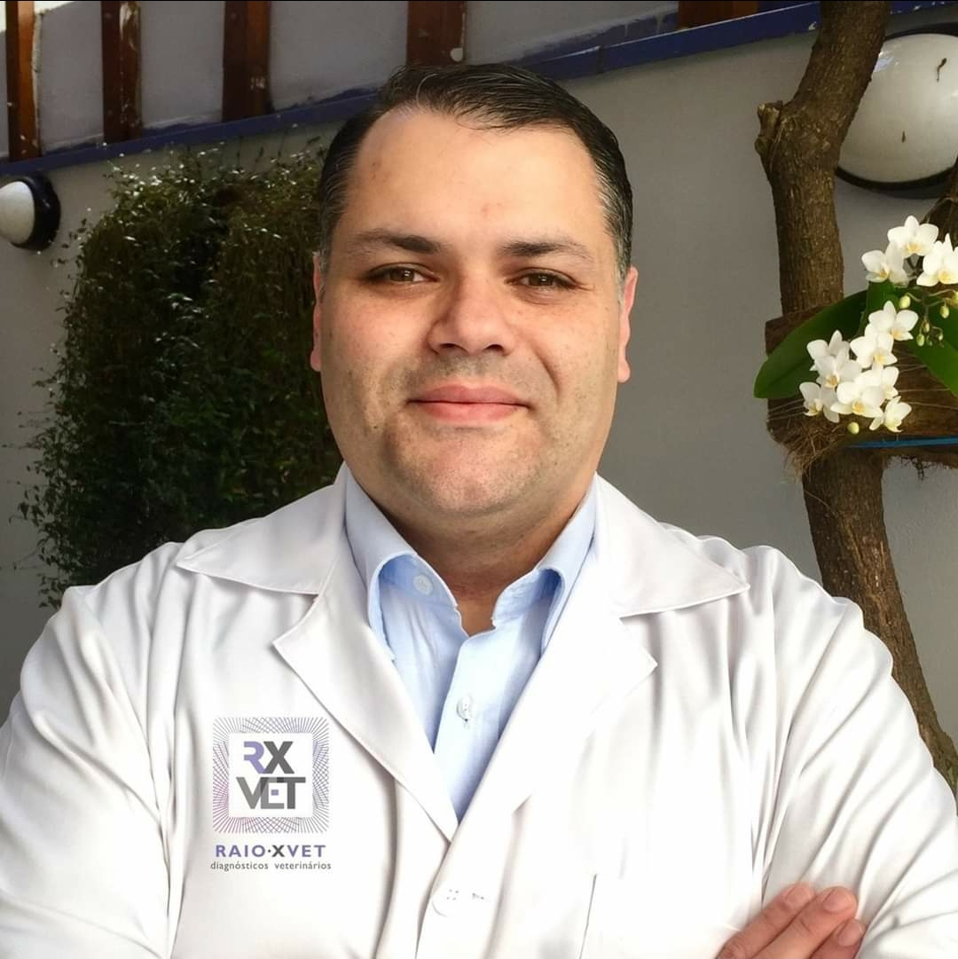 Prof. Daniel dos Santos Baptista