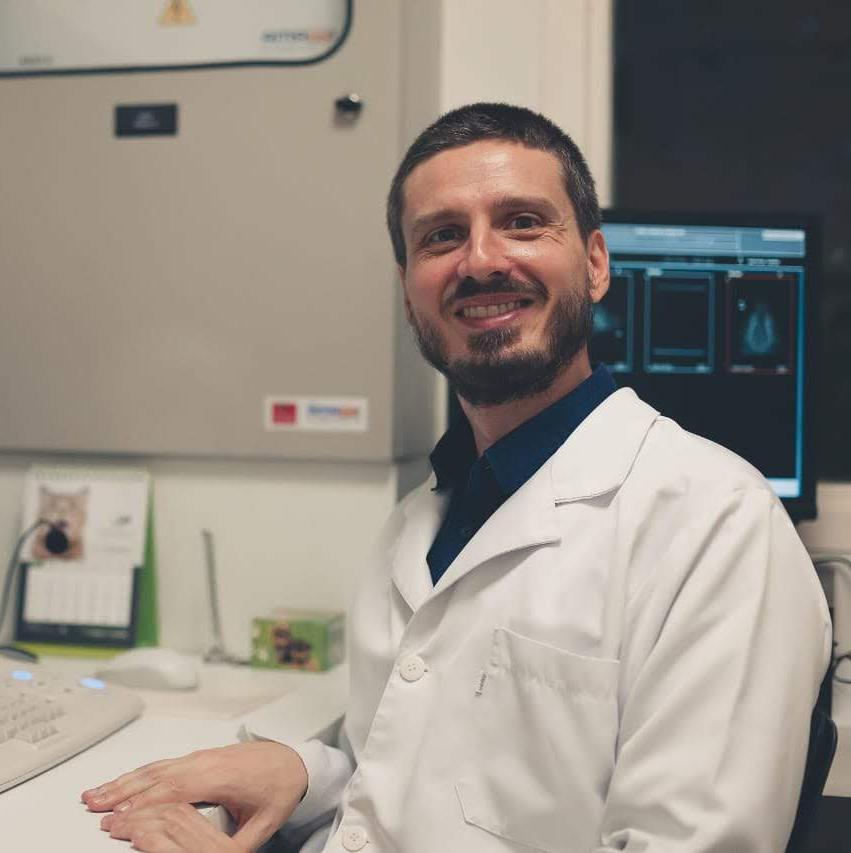 Prof. MSC. Felipe Andrei Suárez Abreu