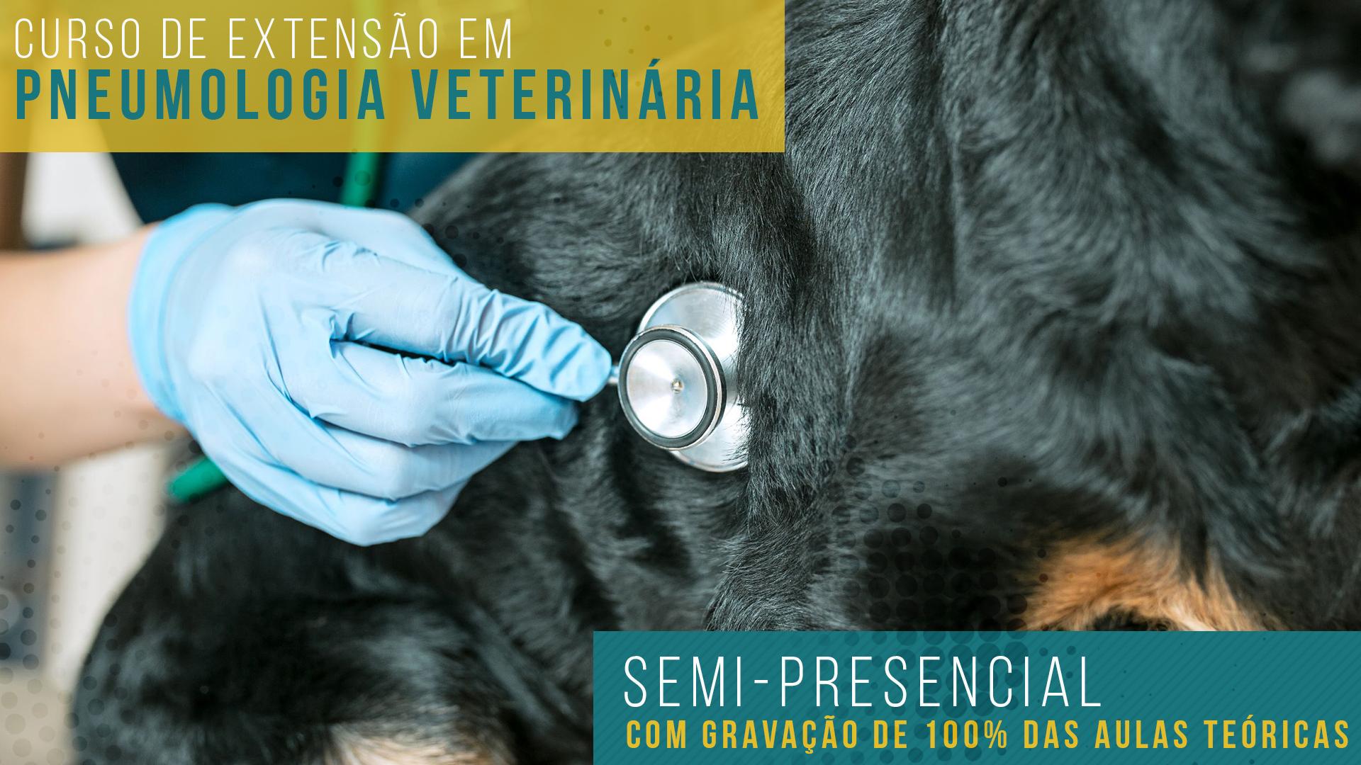 Curso de Extensão em Pneumologia Veterinária IEP Ranvier