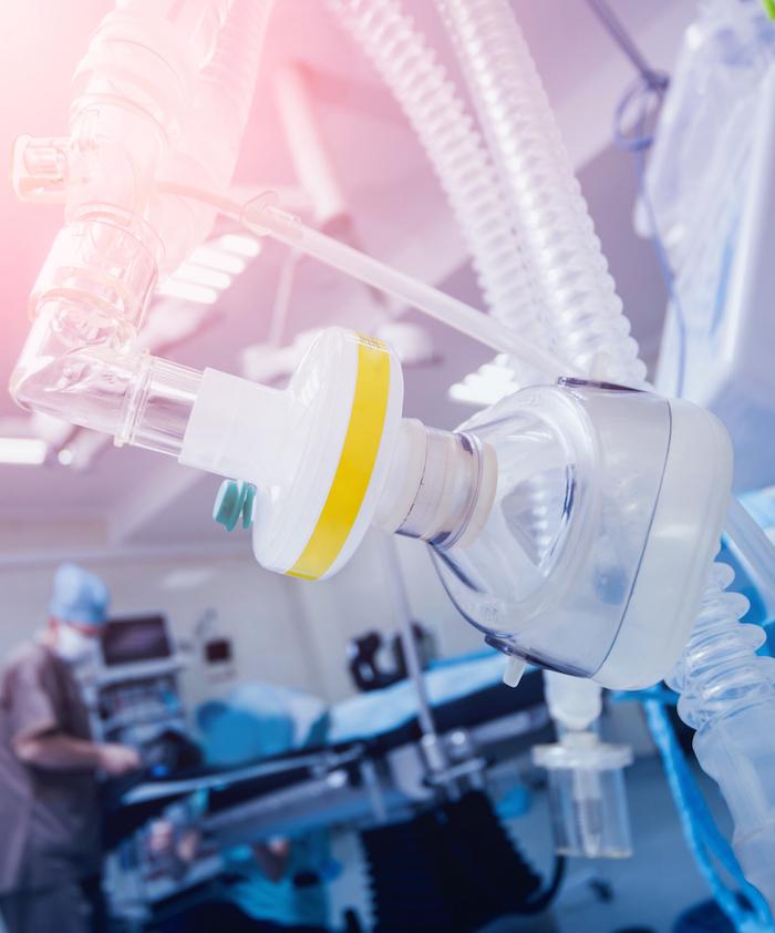 Curso de Imersão em Anestesia Inalatória Veterinária
