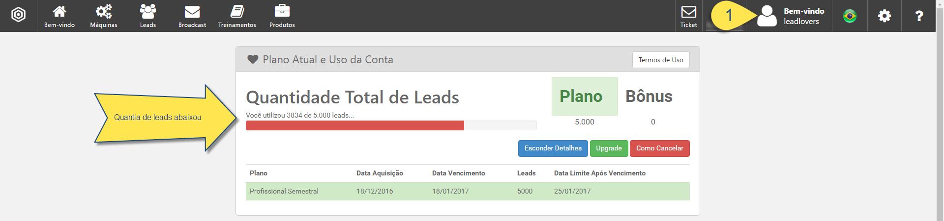 excluir leads