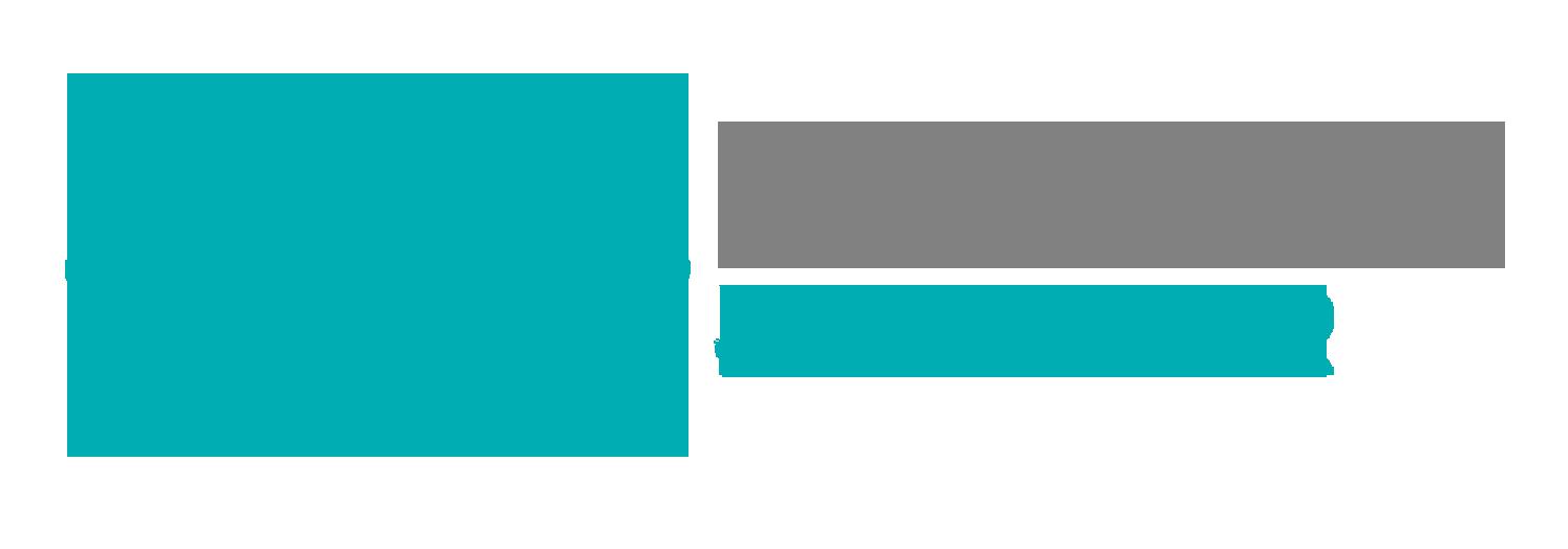 Logo NI