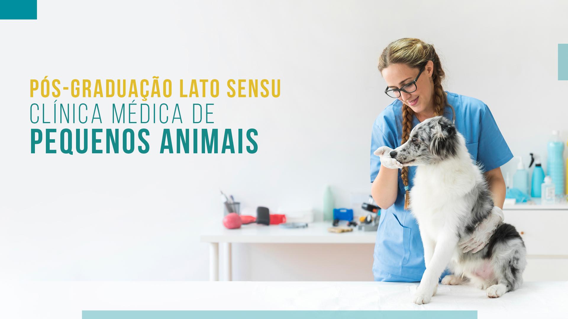 Pós Graduação em Clínica Médica de Pequenos Animais SP 2021