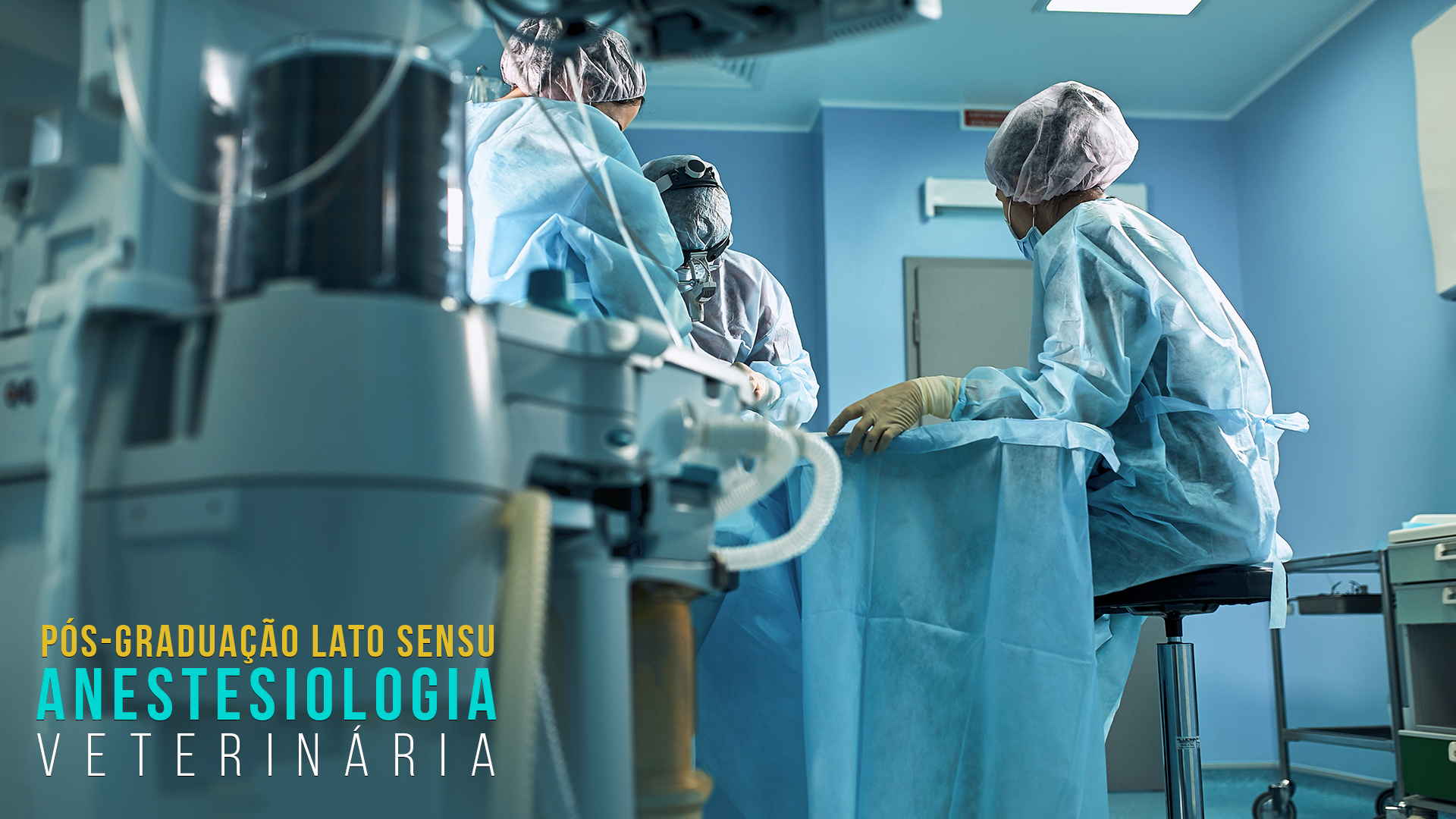 Pós Graduação em Anestesiologia Veterinária Turma V SP